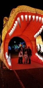 Mike attended Lights of the World Lantern Festival - Arizona State Fairgrounds - Tickets Are Good for Any Day of Your Choice on Dec 17th 2018 via VetTix