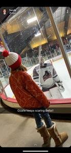 Tony Draeger attended Minnesota Magicians vs. Fairbanks Ice Dogs - NAHL on Feb 15th 2019 via VetTix