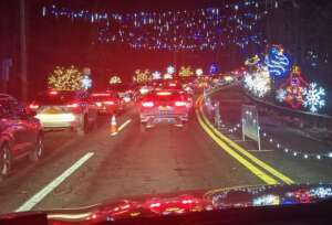 Mike attended Magic of Lights: Drive-through Holiday Lights Experience on Nov 13th 2020 via VetTix